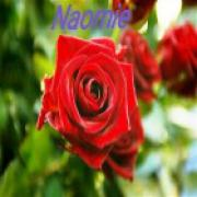 Consultatie met medium Naomie uit Nederland